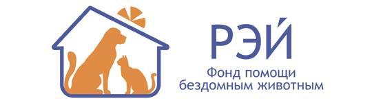Помощь бездомным животным совместно с фондом «РЭЙ»